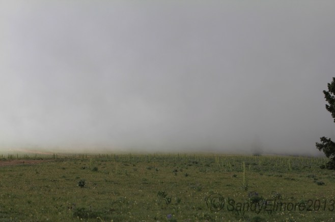 A mid-July fog rolled in and kept the temperature around 40 degrees for more than 12 hours.