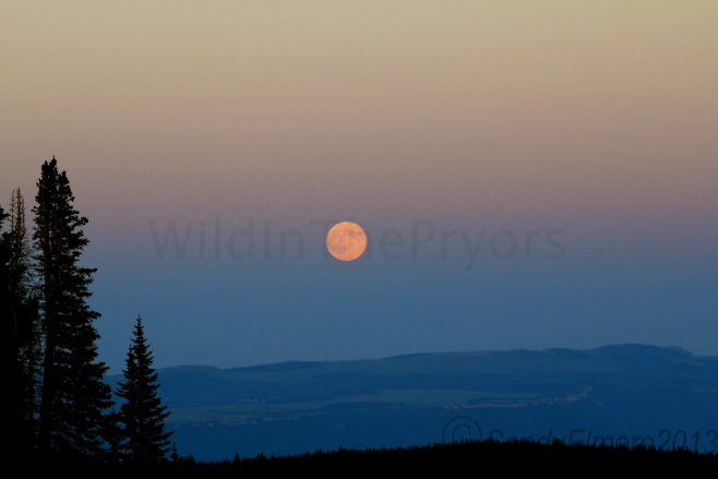Full Moon on top of the mountain