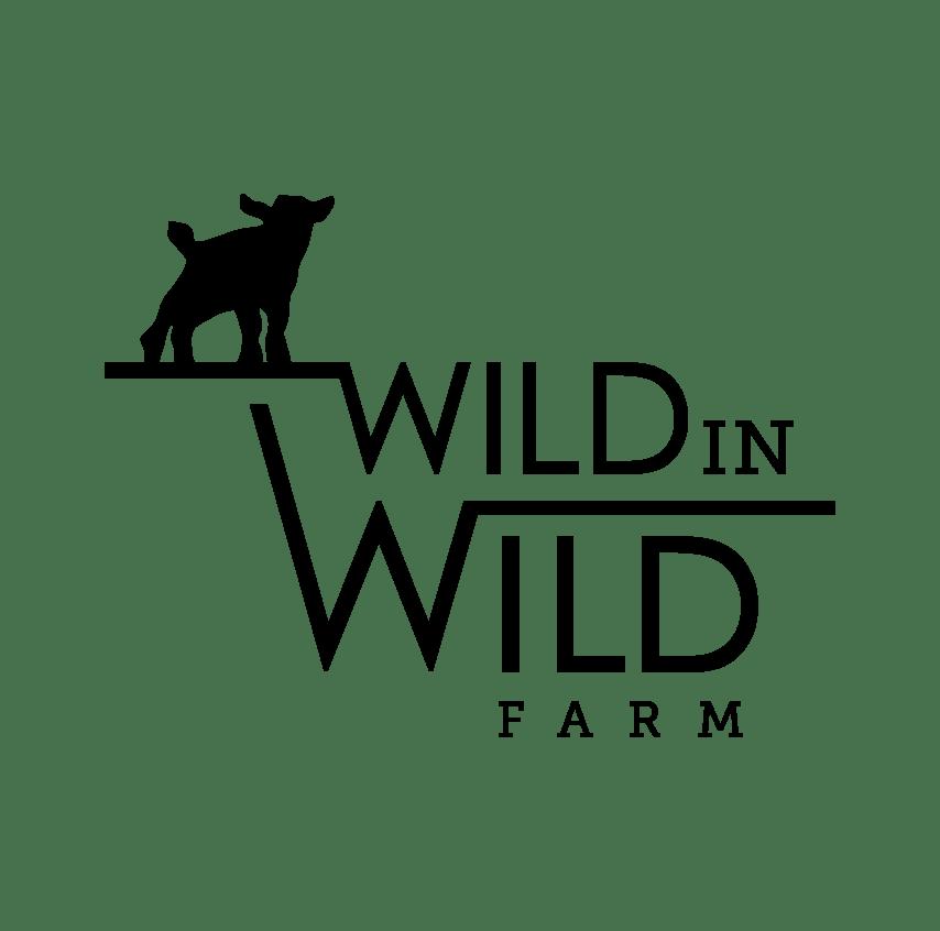 ADGA registered Nigerian Dwarf dairy goats