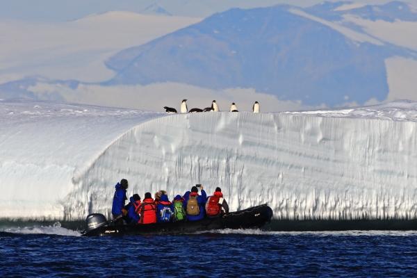 Zodiac cruising around icebergs and Edelie Penguins