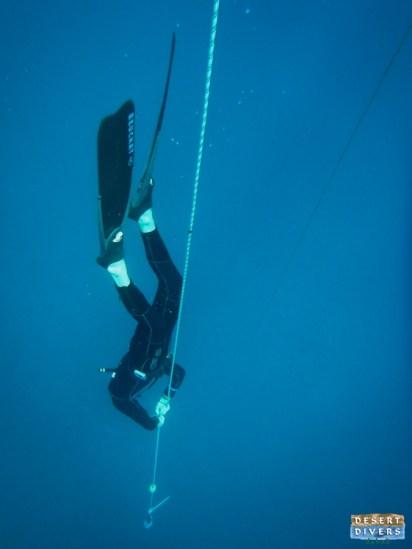 Freedive in Dahab