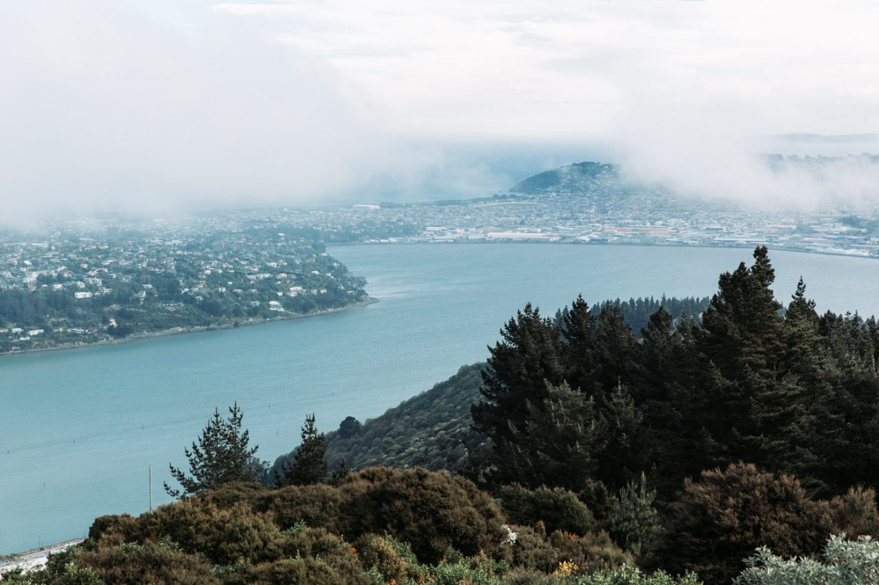 Dunedin city from Signal Hill, South Island, New Zealand