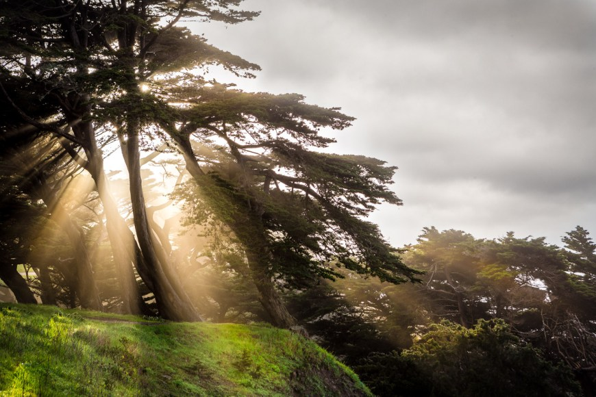 Shooting in raw gave more latitude to this shot from Lands End in San Francisco