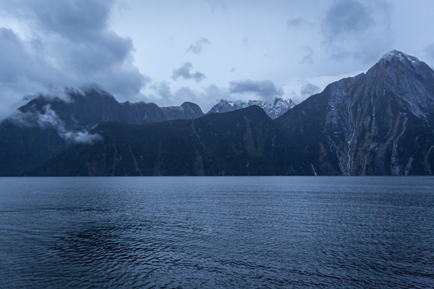 Early morning on our Milford Sound cruise