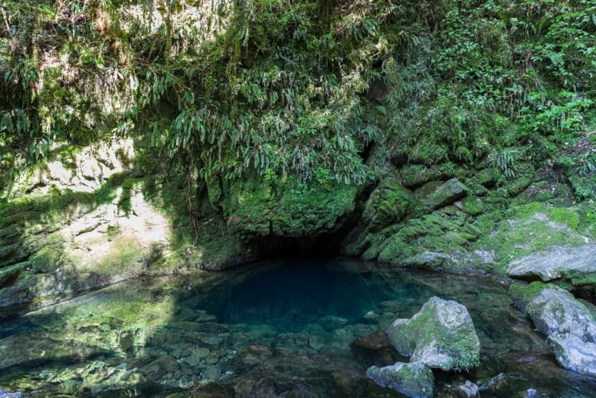 Riuwaka Resurgence on the South Island of New Zealand.