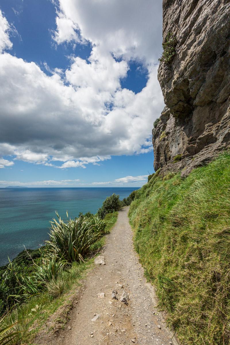 Mount Maunganui, North Island, New Zealand