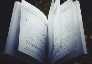 The Wild Lark Books Fund Website Open Book