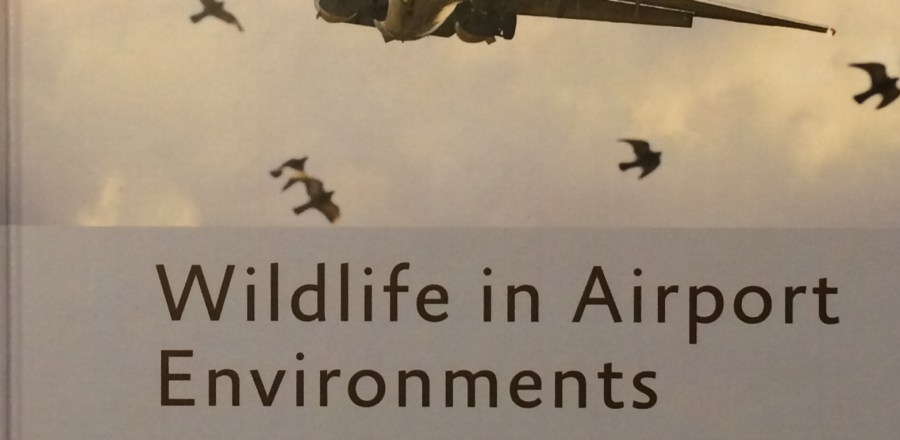 Wildlife and Airport Environments
