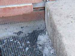 Sub-surface screening method to prevent burrowing animals from accessing structures. Photo by Stephen M. Vantassel.