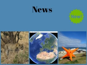 Wildlife Blog - News