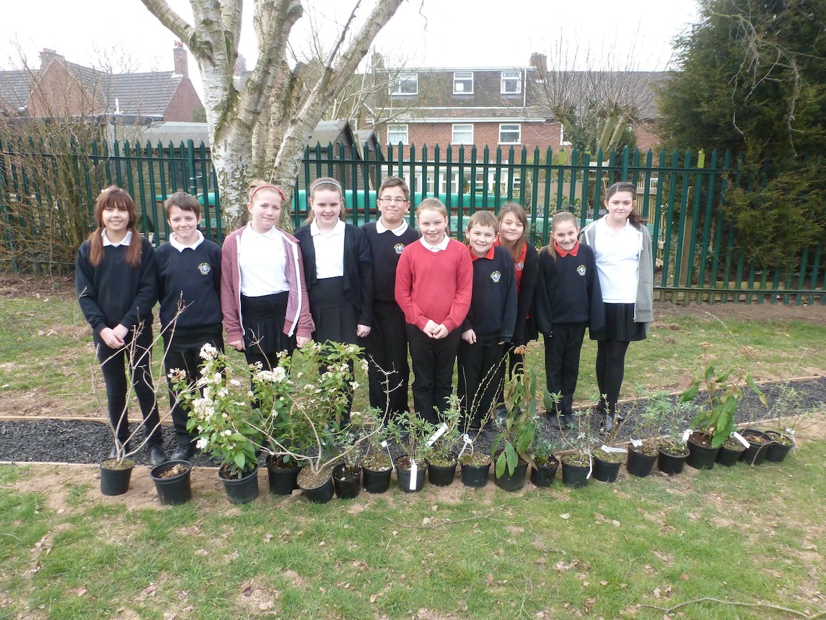 A Busy Week Of School Planting Nocturnal Animals Ponds