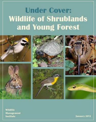 Store  Wildlife Management Institute