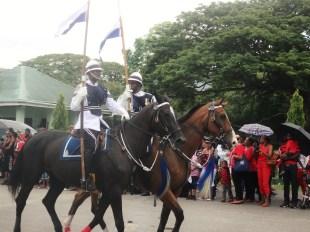 Horses Havannah and Heinrich
