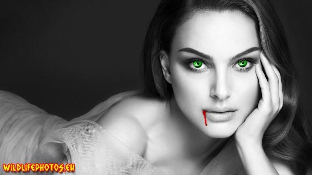 vampiroaica