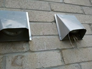 Birds in vents removal and Preventing birds from nesting in vents.