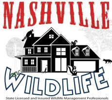 nashville wildlife logo
