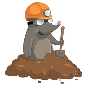 Mole Removal Bradenton Nuisance Wildlife Control And Removal Lakewood Ranch Mole