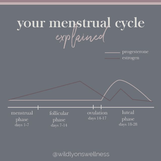 Your Menstrual Cycle Explained