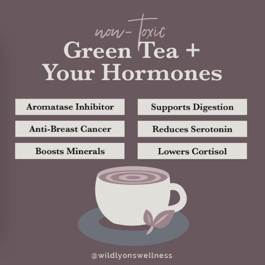 Non-Toxic Green Tea + Your Hormones