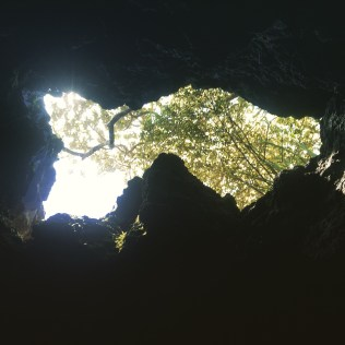 Emerging from the lava caves