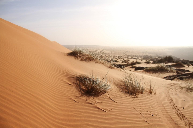 Mauritania-erg-amatlich-vallée-Blanche8