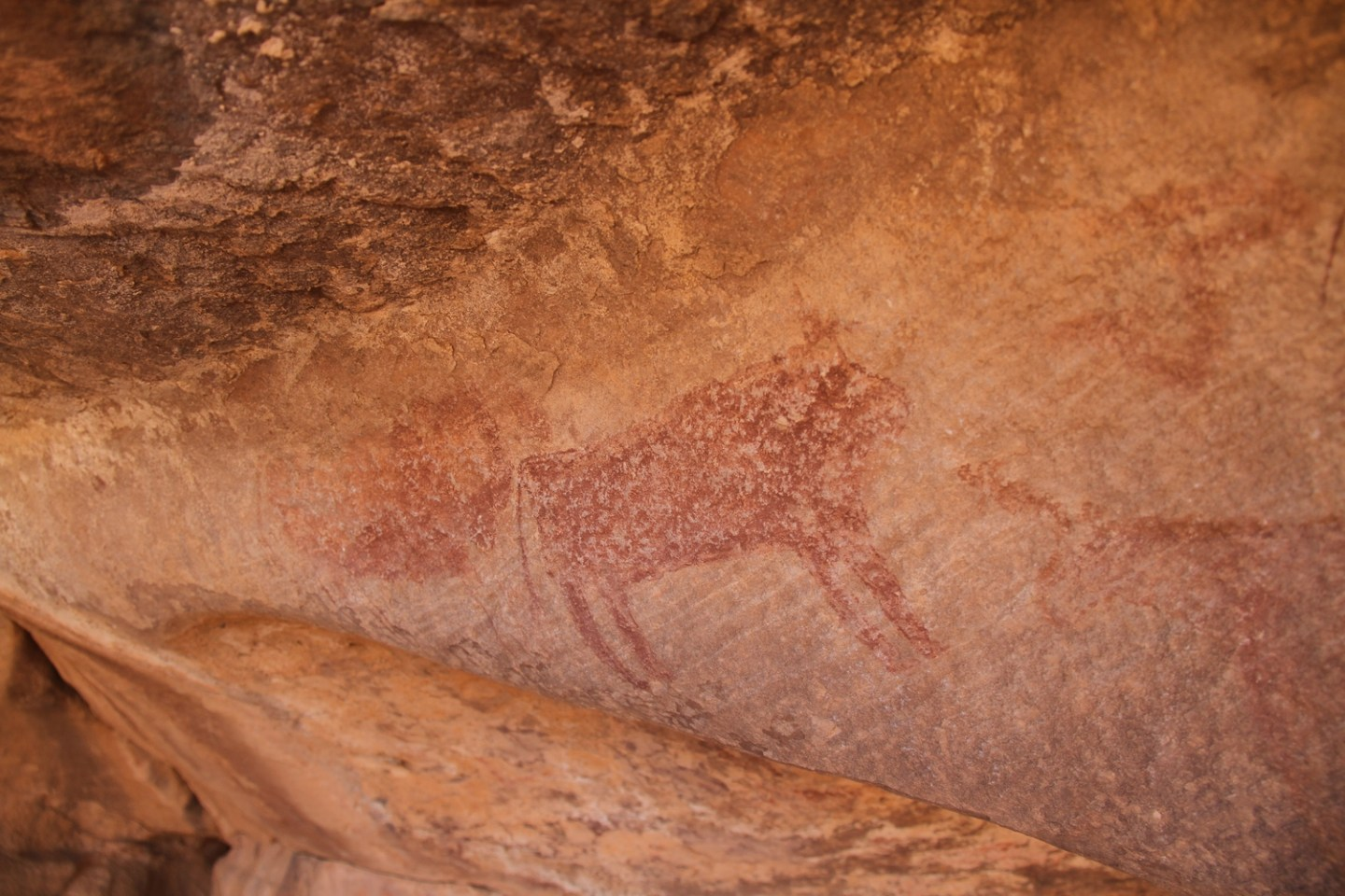 Agrour-Amogjar-Neolithic-rock-paintings5