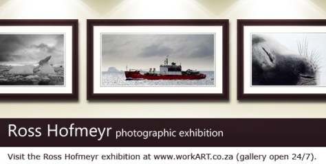 Ross Hofmeyr exhibition on workART