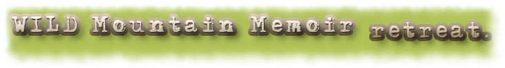 wild mountain logo bar