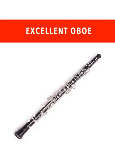 Excellent Oboe