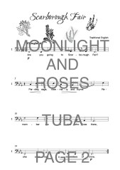 The Twinkling Tuba Book of Moonlight and Roses Web Sample1