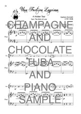 The Twinkling Tuba book of Champagne and Chocolate Web Sample2