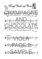 The Valiant Viola book of Champagne and Chocolate Web Sample1