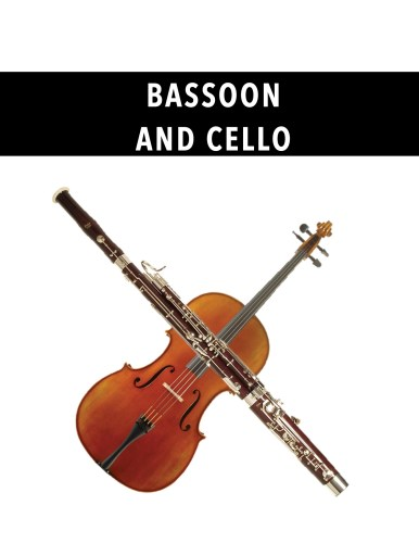 Bassoon and Cello