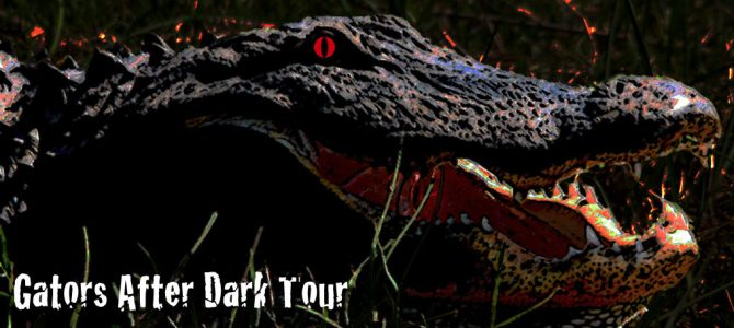Gators After Dark Tour