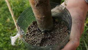 Wasserfilter grober Sand wildnis