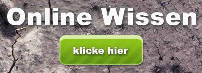 wtg online wissen