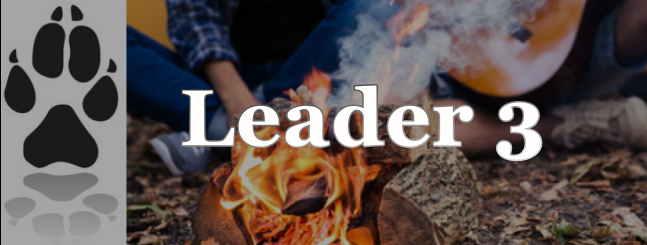 leader 3 wildnis.at