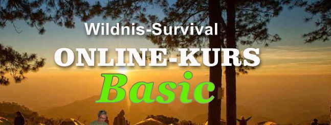 online kurs basic wildnis survival