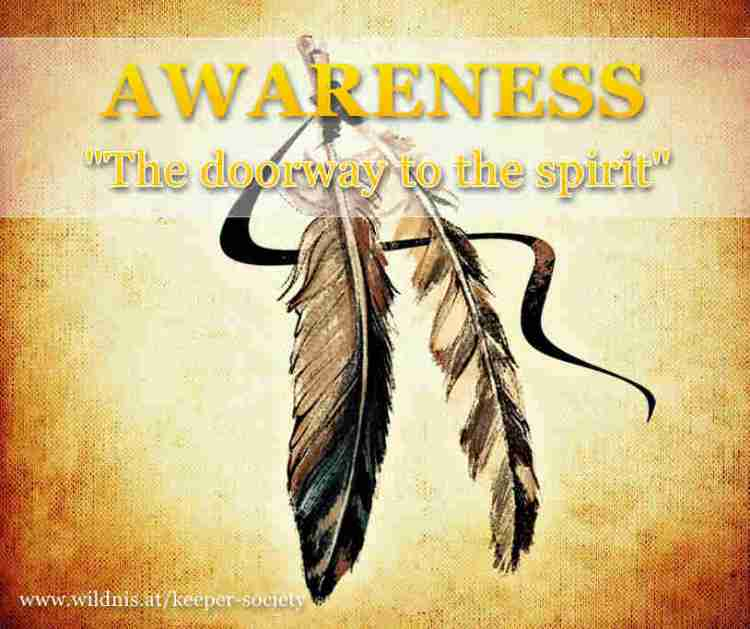 awareness philosophie wildnis.at