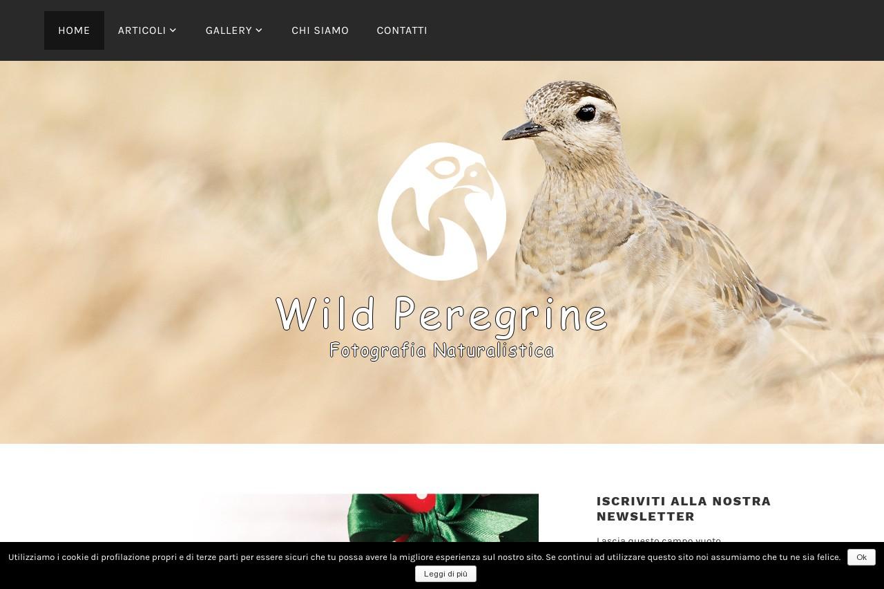 Wildperegrine.com