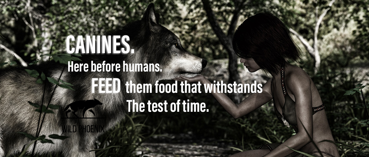 Canines. Here before humans.