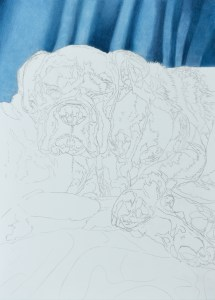 Work in progress pet dog portrait commission in coloured pencil