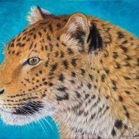 """""""Determination"""" - 30 x 40cm portrait of an amur leopard in pastels. Art by Wild Portrait Artist. Available for sale."""