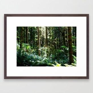 fresh-air-qpl-framed-prints