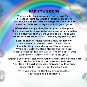 rainbow_bridge_poem_ceramic_ornament-r5881fa34f8d149519aa8b51ad2bfa783_x7s2y_8byvr_307.jpg