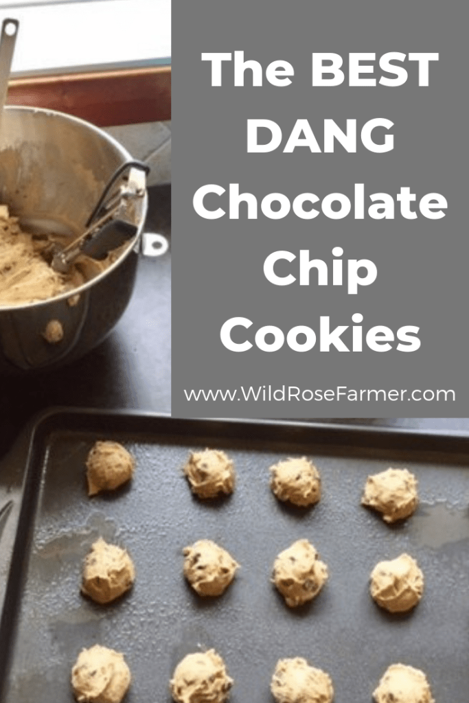 The BEST Chocolate Chip Cookies | Soft & Chewy | #WildRoseFarmer