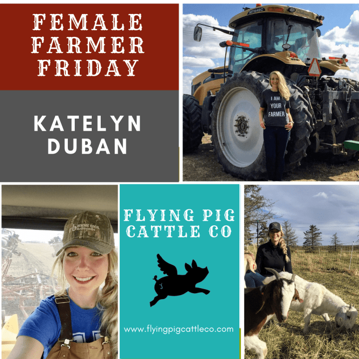 Female Farmer Friday with Katelyn Duban | Flying Pig Cattle Co. | WildRoseFarmer.com