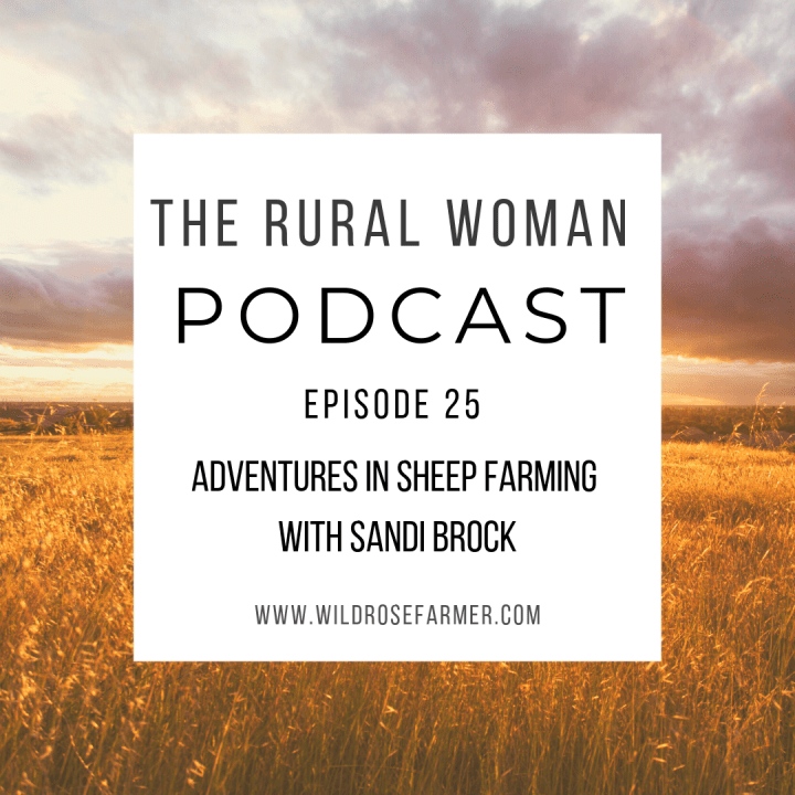 The Rural Woman Podcast Episode 25: Adventures in Sheep Farming with Sandi Brock