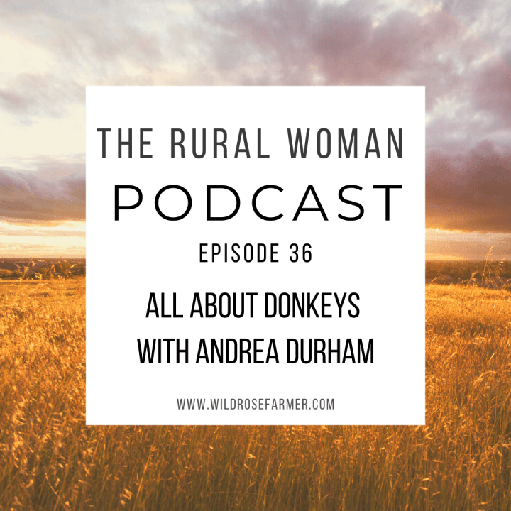 The Rural Woman Podcast Episode 36 – All About Donkeys with Andrea Durham