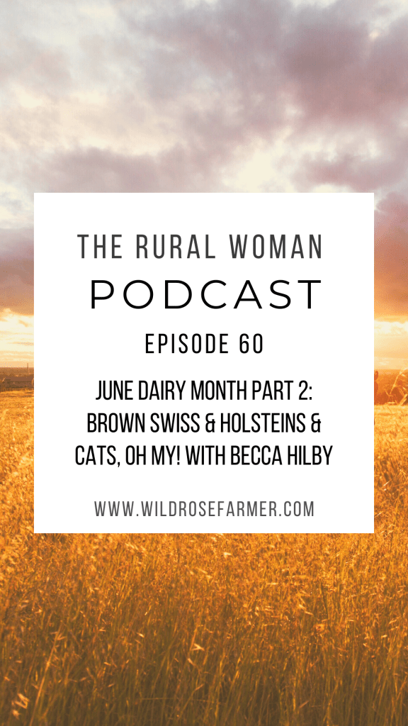 The Rural Woman Podcast Episode 60 - June Dairy Month Part 2: Brown Swiss & Holsteins & Cats, Oh my! with Becca Hilby